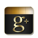 Google Plus Black and Gold-128