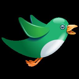Twitter green birdie
