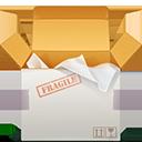 Fragile Delivery-128