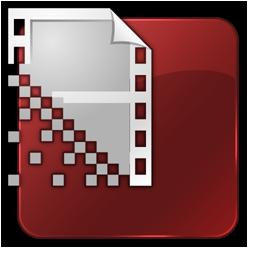 Flash Encoder