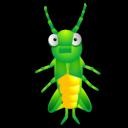 Cricket-128