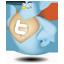 Twitter Hero Icon