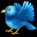 Fly away twitter-128