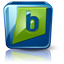 Brightkite high detail icon