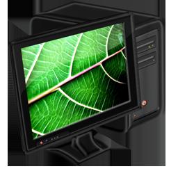 My Computer leaf