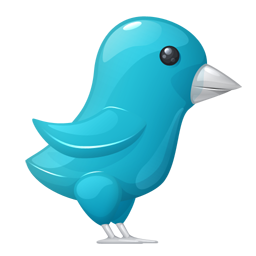 Plastic Twitter Bird