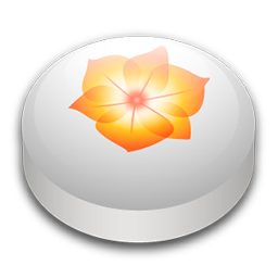 Adobe Illustrator CS2 puck