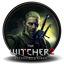 The Witcher 2 Icon