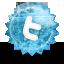 Twitter grunge icon