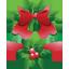 Mistletoe-64