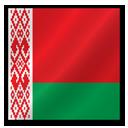Belarus flag-128