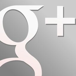 GooglePlus Grey